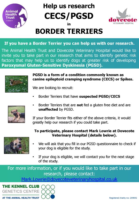Flyer for research into Border Terriers with PGSD showing details of how to get involved by emailing Mark Lowrie