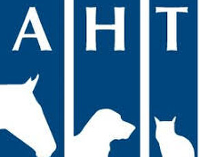 Give a Dog a Genome Update from Animal Health Trust