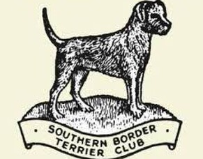 Southern Border Terrier Club Fun Day
