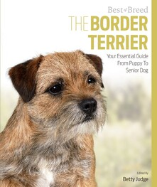 The Border Terrier book front cover with a border terrier sitting looking appealing