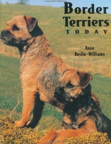 Border Terriers Today book front cover image with 2 border terriers looking alert